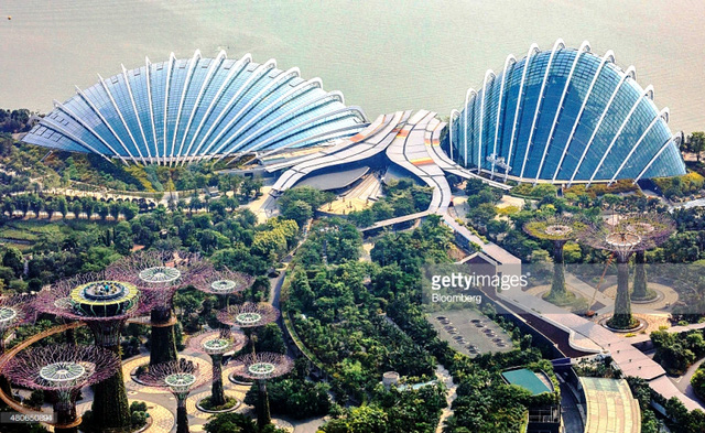 Bí quyết trở thành thành phố trong vườn của Singapore - Ảnh 5.