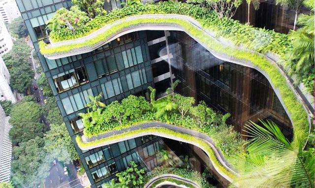 Bí quyết trở thành thành phố trong vườn của Singapore - Ảnh 1.