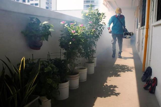 Singapore xác nhận có 56 trường hợp nhiễm virus Zika - Ảnh 1.