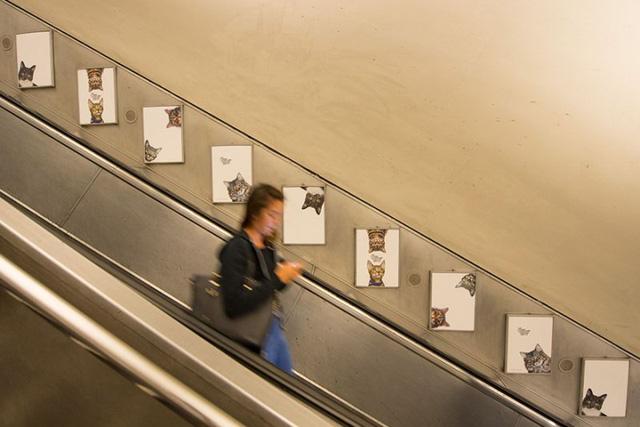 Hàng trăm chú mèo chiếm lĩnh ga tàu điện ngầm tại London - Ảnh 1.