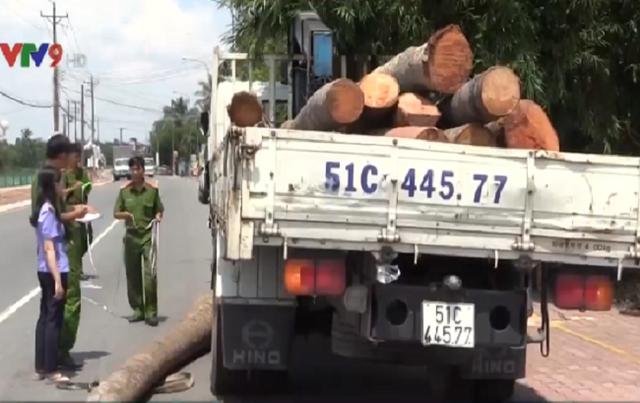 Tai nạn hi hữu: Xe cẩu làm rơi thân dừa đè chết cậu bé 15 tuổi tại Bình Dương - Ảnh 1.