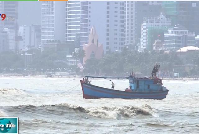 Khánh Hòa: Mưa khiến nhiều cây xanh ngã đổ, 1 tàu cá bị chìm - Ảnh 2.