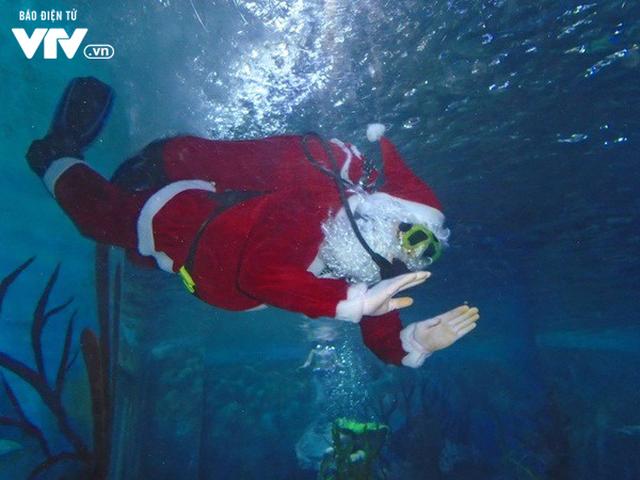 Câu chuyện về những nghề đặc biệt mùa Giáng sinh - Ảnh 3.