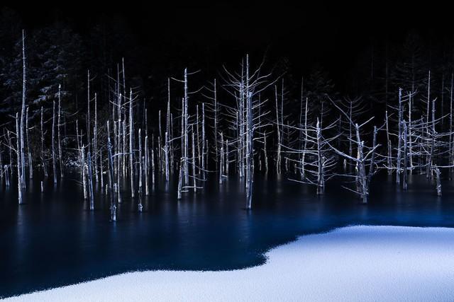 Ngỡ ngàng trước những bức ảnh thiên nhiên đẹp không tưởng - Ảnh 13.