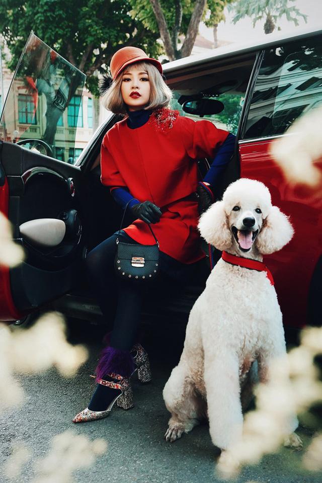 Chi Pu khác lạ với tóc ngắn, ra phố đón xuân cùng cún cưng - Ảnh 6.