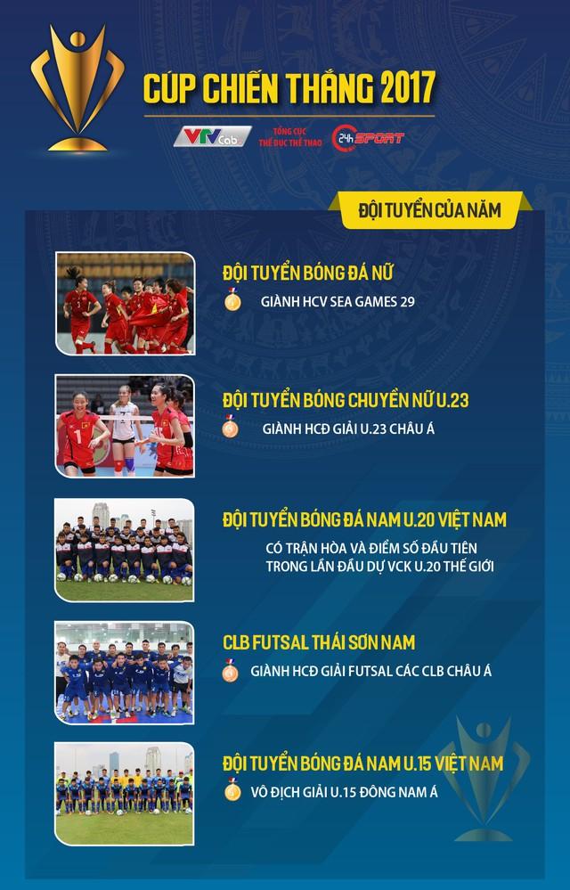 Cup Chiến thắng 2017: Lê Thanh Tùng, Bùi Thị Thu Thảo dẫn đầu bình chọn - Ảnh 2.