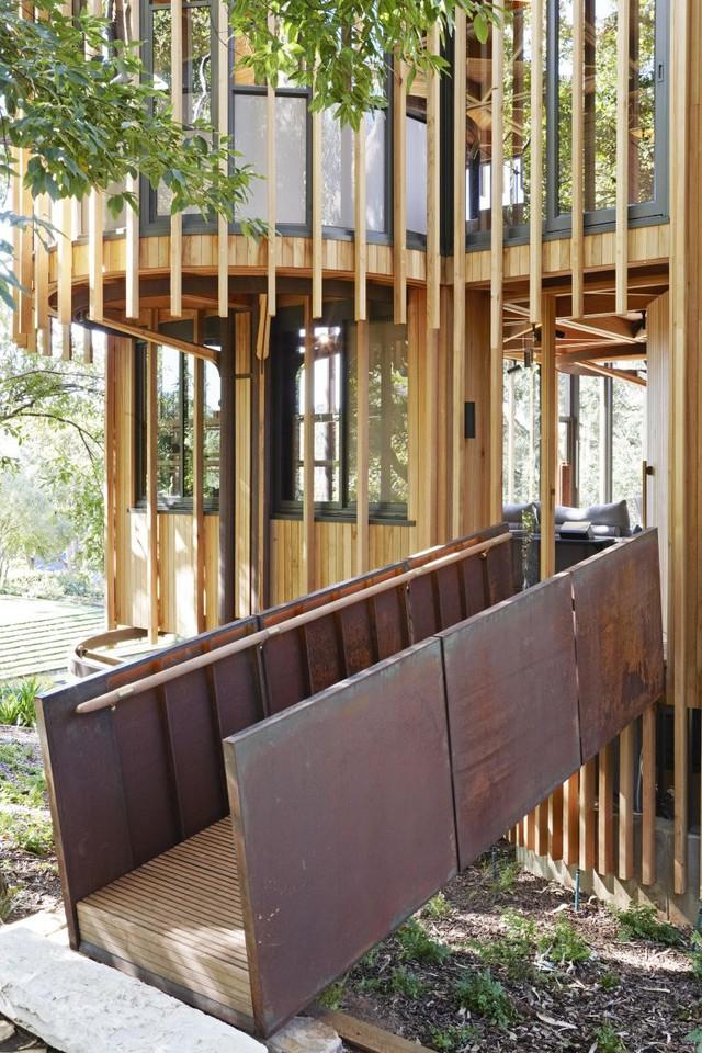 Nhà cây ấn tượng ở Nam Phi làm du khách mê mệt - Ảnh 2.