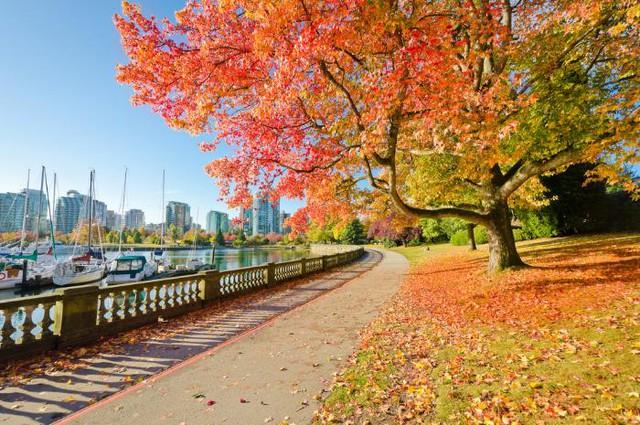 Những điểm du lịch không thể bỏ qua vào mùa thu - Ảnh 1.