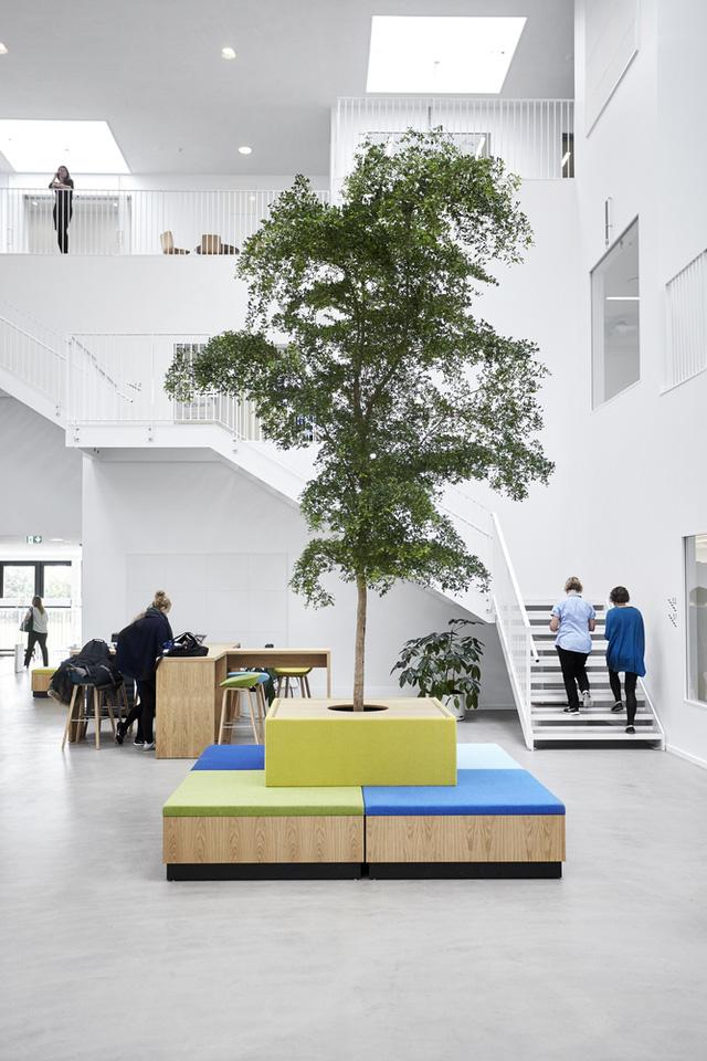 Không gian ấn tượng của trường đại học ở Đan Mạch - Ảnh 5.