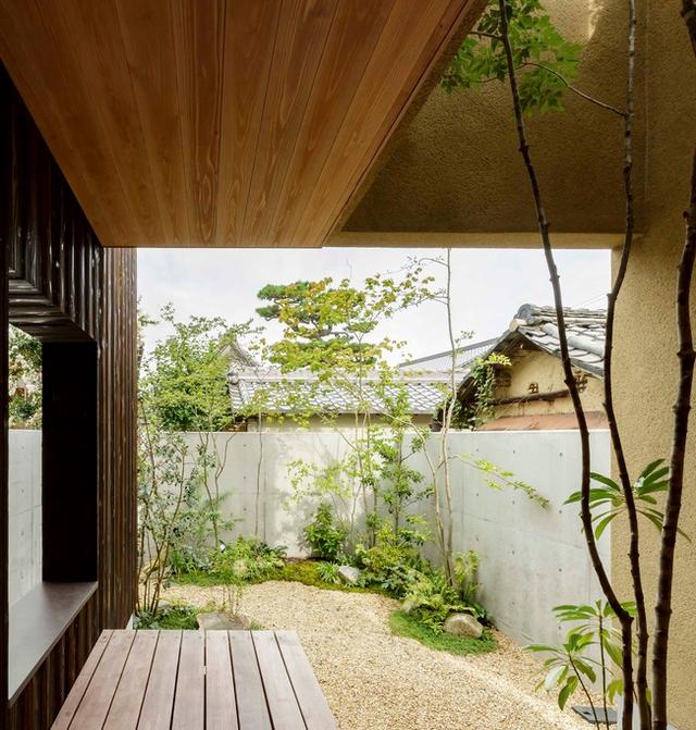 Thiết kế nhà với nội thất toàn bằng gỗ và khoảng giếng trời xanh ngát - Ảnh 11.