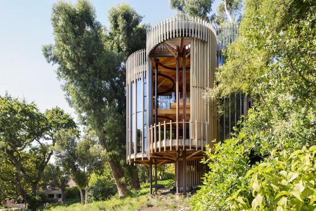 Nhà cây ấn tượng ở Nam Phi làm du khách mê mệt - Ảnh 1.