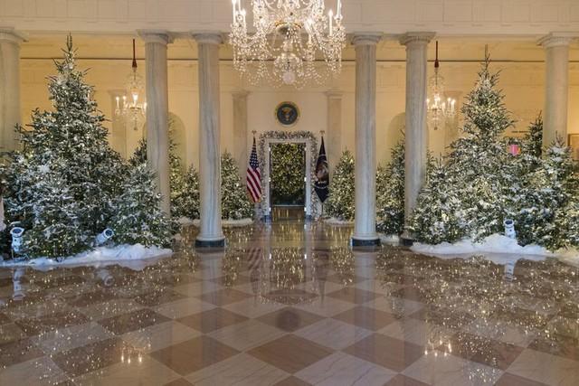 Nhà Trắng trang hoàng lộng lẫy đón Giáng sinh và năm mới - Ảnh 1.