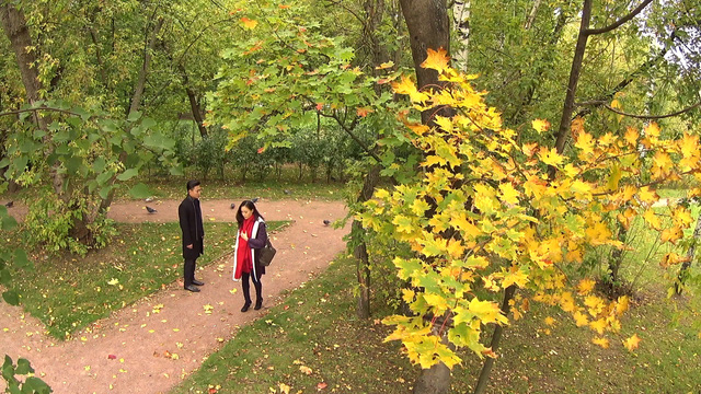 Hậu trường dữ dội để có Thu vàng rực rỡ nước Nga trong phim Tết Matxcơva – Mùa thay lá - Ảnh 2.