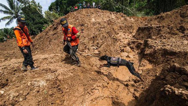 Indonesia: Lở đất trên sườn núi lửa, ít nhất 8 người thiệt mạng - Ảnh 3.