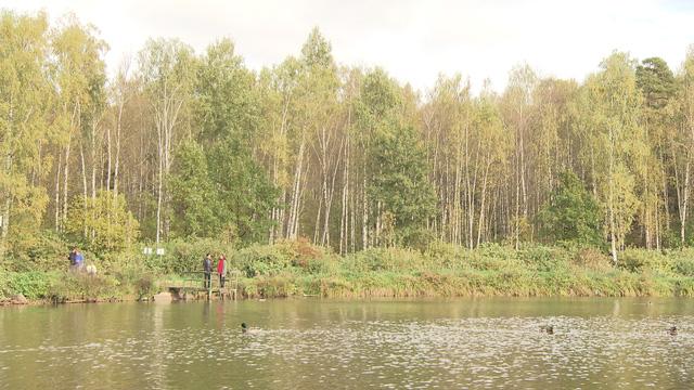 Hậu trường dữ dội để có Thu vàng rực rỡ nước Nga trong phim Tết Matxcơva – Mùa thay lá - Ảnh 1.