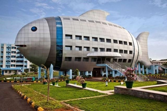 """Những văn phòng """"độc"""" và đẹp nhất Ấn Độ - Ảnh 8."""