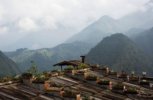 Việt Nam qua ống kính du khách quốc tế - Ảnh 12.