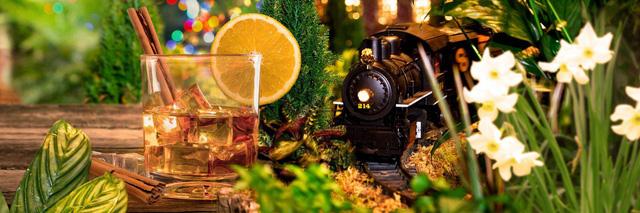 Ấn tượng Holiday Train Show 2017 chào đón Giáng Sinh tại Mỹ - Ảnh 1.