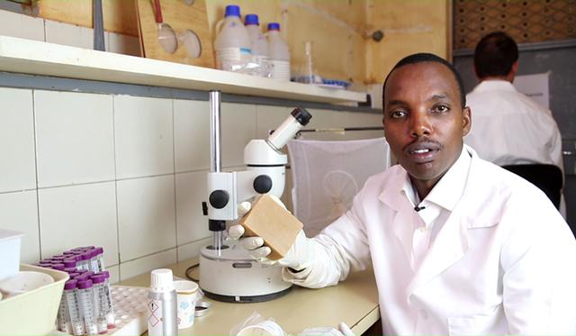 Xà phòng chống muỗi đốt tại châu Phi - Ảnh 1.