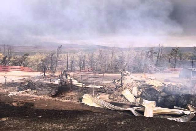 Cháy rừng bùng phát dữ dội ở Canada - Ảnh 2.