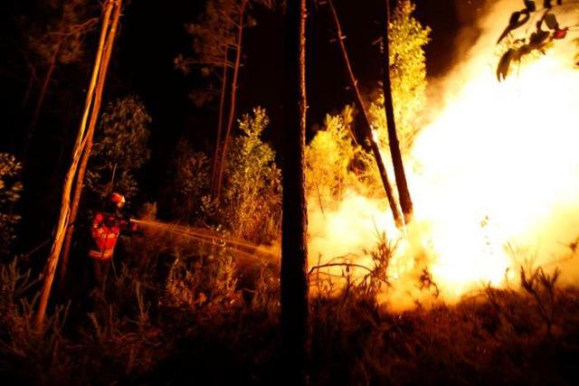 Cháy rừng ở Bồ Đào Nha: Số người thương vong đã lên tới hơn 100 - Ảnh 3.