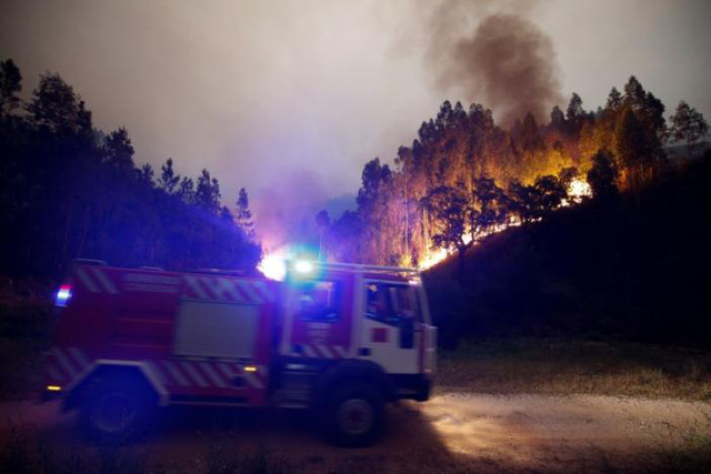 Cháy rừng ở Bồ Đào Nha: Số người thương vong đã lên tới hơn 100 - Ảnh 2.