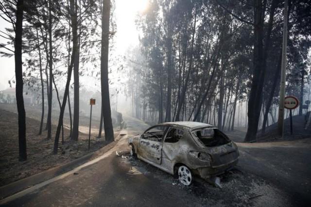 Cháy rừng ở Bồ Đào Nha: Số người thương vong đã lên tới hơn 100 - Ảnh 9.