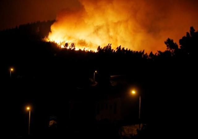 Cháy rừng ở Bồ Đào Nha: Số người thương vong đã lên tới hơn 100 - Ảnh 1.