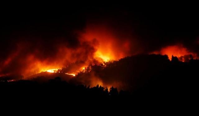 Cháy rừng ở Bồ Đào Nha: Số người thương vong đã lên tới hơn 100 - Ảnh 4.