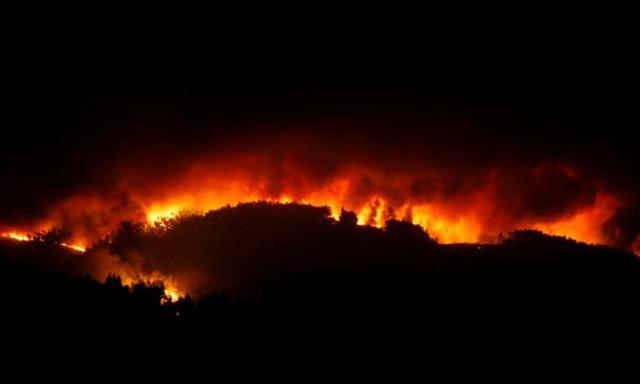 Cháy rừng ở Bồ Đào Nha: Số người thương vong đã lên tới hơn 100 - Ảnh 5.