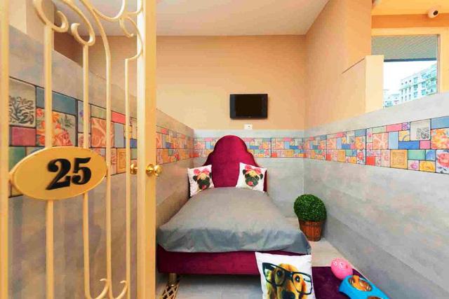 Khách sạn phong cách quý tộc dành cho cún cưng ở Ấn Độ - Ảnh 8.