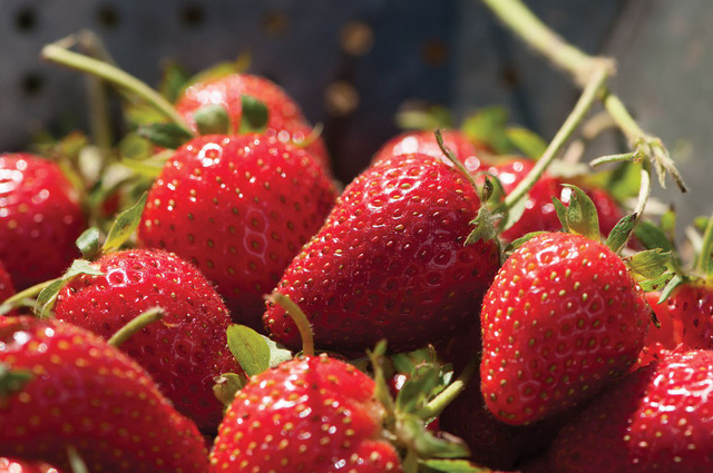 Các loại trái cây phù hợp cho việc giảm cân - ảnh 3