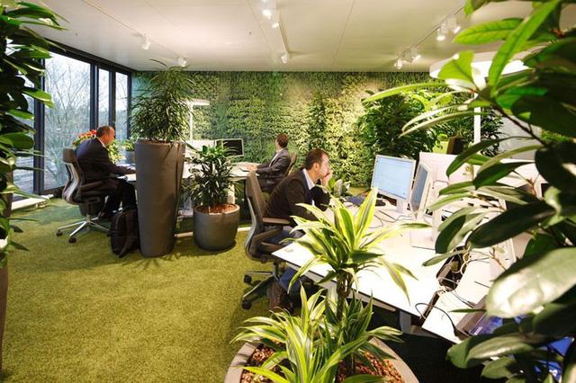 Không phải kiểu đóng hộp, đây mới là thiết kế văn phòng phù hợp trong tương lai - Ảnh 5.