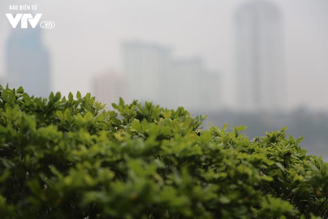 Hà Nội đón tiết trời như Sapa trong buổi sáng mưa lạnh - Ảnh 22.