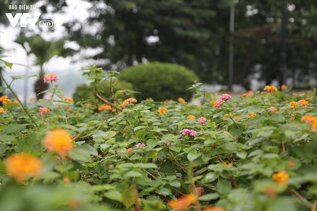 Hà Nội đón tiết trời như Sapa trong buổi sáng mưa lạnh - Ảnh 21.