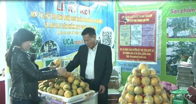 Đa dạng sản phẩm Hội chợ Công thương vùng Bắc Trung Bộ - Nghệ An - Ảnh 1.