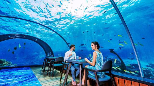Khám phá nhà hàng dưới nước lớn nhất thế giới - Ảnh 5.