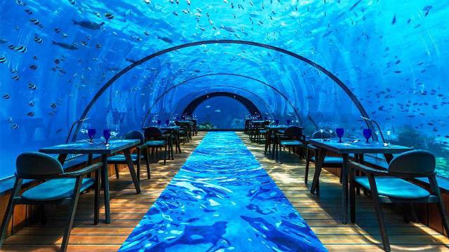 Khám phá nhà hàng dưới nước lớn nhất thế giới - Ảnh 2.