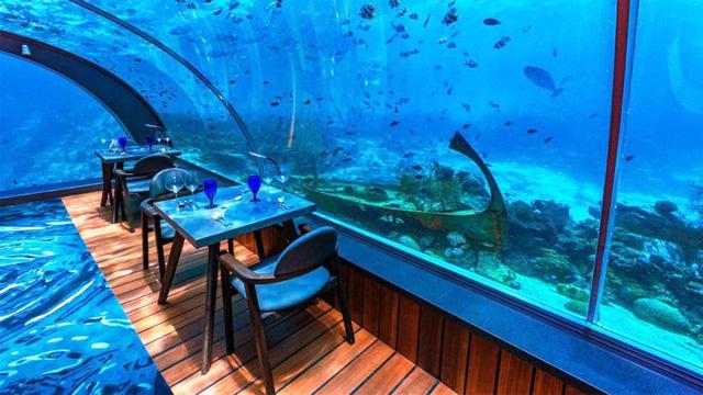 Khám phá nhà hàng dưới nước lớn nhất thế giới - Ảnh 3.