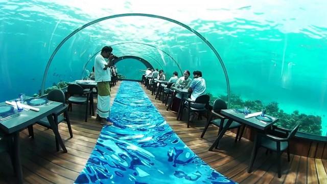 Khám phá nhà hàng dưới nước lớn nhất thế giới - Ảnh 4.