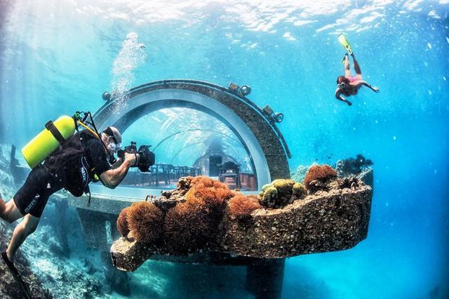 Khám phá nhà hàng dưới nước lớn nhất thế giới - Ảnh 1.