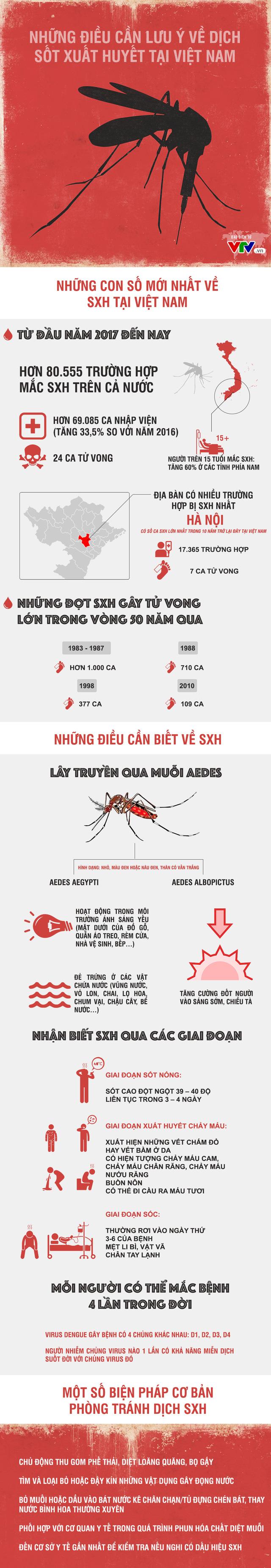 INFOGRAPHIC: Những điều cần lưu ý về dịch sốt xuất huyết tại Việt Nam - Ảnh 1.