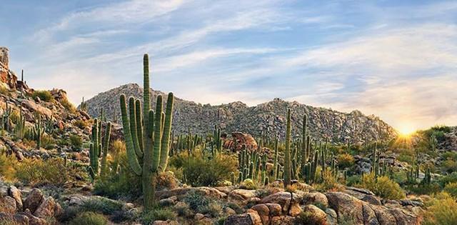 Những nơi có khí hậu đặc biệt nhất thế giới - Ảnh 2.