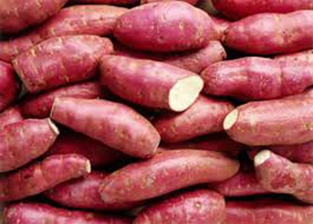 Những loại thực phẩm hỗ trợ thanh lọc cơ thể hiệu quả - Ảnh 2.