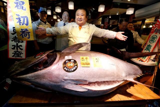 Ông vua cá ngừ Nhật Bản lo ngại chợ cá Tsukiji khó giữ nét truyền thống - Ảnh 1.