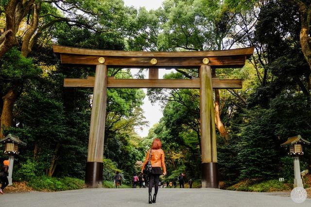 Du khách đến Tokyo không nên bỏ qua những điểm khám phá này - Ảnh 9.