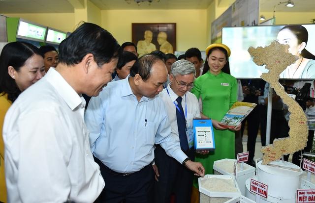 Thủ tướng: Cần một tầm nhìn mới cho hạt gạo Việt Nam - Ảnh 1.