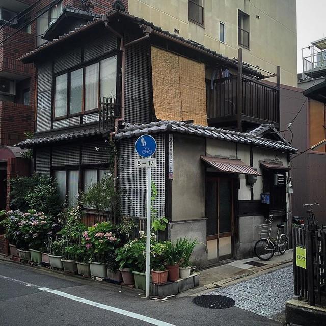 Thích thú với muôn vàn ngôi nhà tí hon độc đáo ở Kyoto - Ảnh 9.