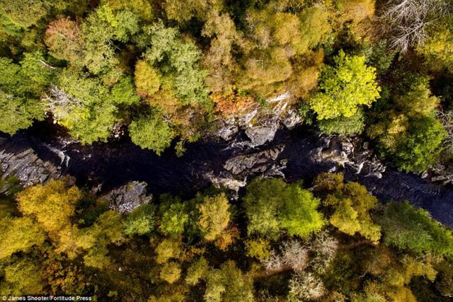 Cảnh mùa thu tuyệt đẹp ở Scotland nhìn từ trên cao - Ảnh 9.