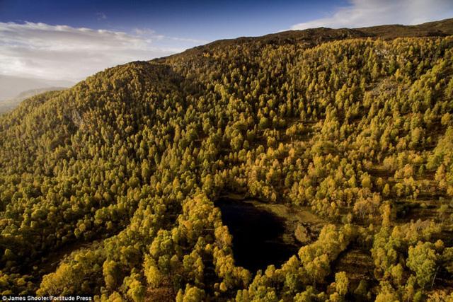 Cảnh mùa thu tuyệt đẹp ở Scotland nhìn từ trên cao - Ảnh 10.
